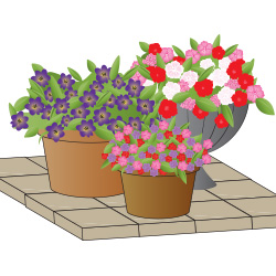 ideal for patio displays